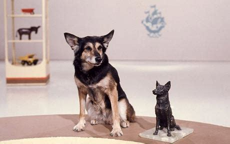Petra the Blue Peter dog was a fake