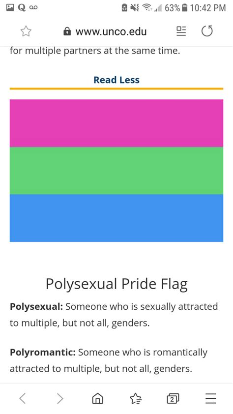 What does each LGBTQ+ flag stand for and what is the