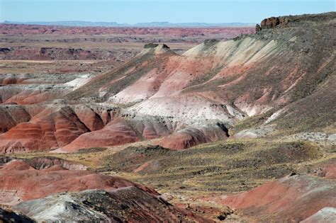 Living on Earth: Exploring the Parks: Petrified Forest