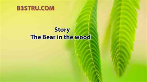 Write a story on the bear in the wood | B3STRU The Bear in
